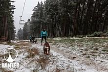 Winter Skyrace 2018 zdarma